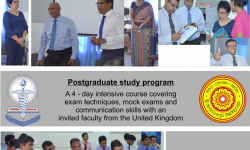 Postgraduate Study Programme on Obstetrics and Gynaecology